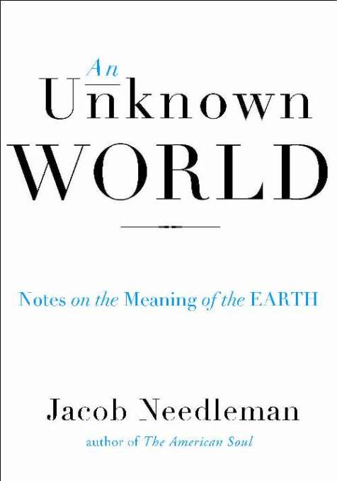 1001 Jacob Needleman An Unknown World cover
