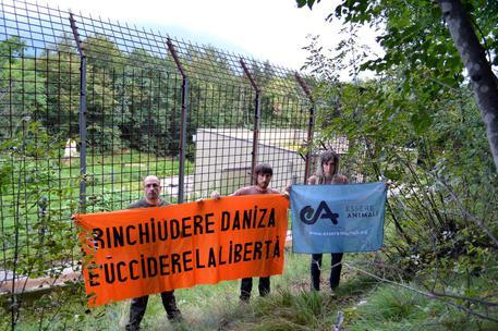 Aggredito da orso: Galletti, non sto con Daniza nè contro