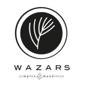 WAZARS store