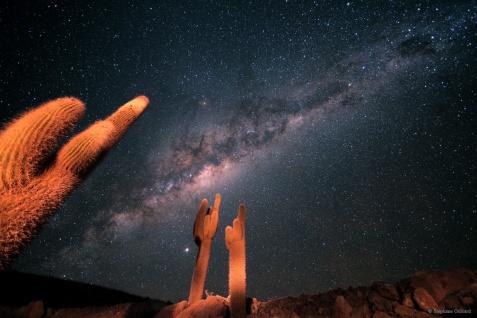 """""""Scuola di Atene"""", deserto di Atacama"""